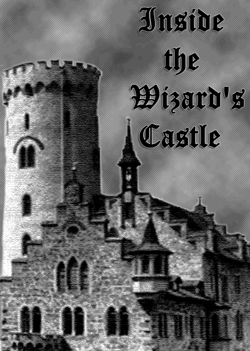 Inside the Wizard's Castle-Cover